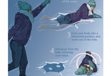 How to Survive Falling Through the Ice, Adobe Illustrator. Illustration © Caitlin Mock