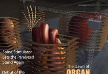 Editorial - The Dawn of Organ Construction Illustration © Michael G. Silver