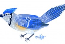 Blue Jay, Nature Mandala Book Art. © Tim Phelps, MS, FAMI