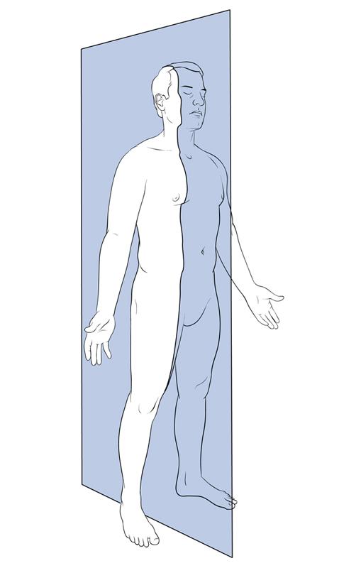 Midclavicular Sagittal Plane – Art as Applied to Medicine