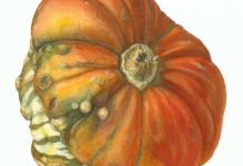 Turkish Turban Squash. Watercolor, color pencils. Illustration © Mariya Pantyukhina