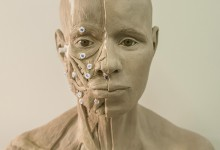 Forensic head reconstruction. Casting, oil and wax based clay, acrylic ocular prostheses. Illustration © Mesa Schumacher